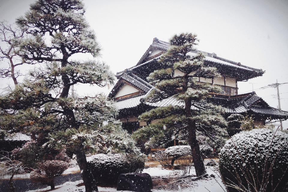 Ibaraki Japan  city images : First Day of Snow – Mito, Ibaraki, Japan | jacqueline joseph